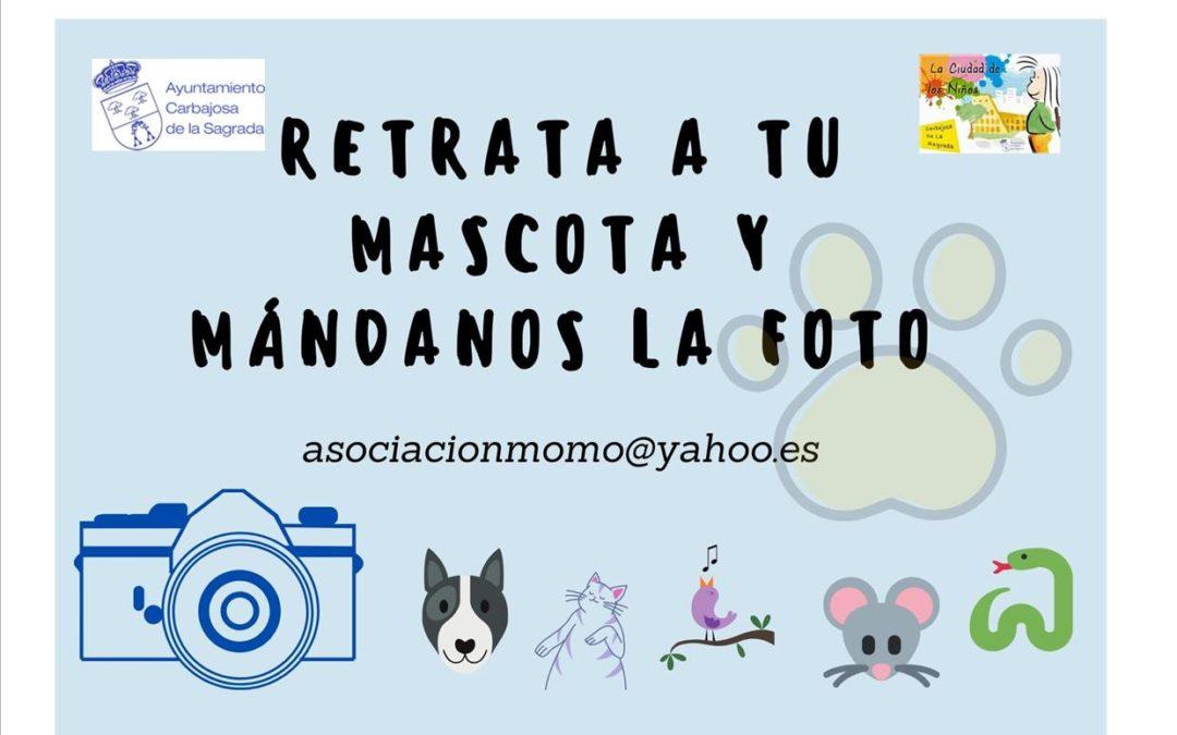 ¡¡¡NOVEDADES!! Estamos recibiendo nuevas                               Foto de tu mascota