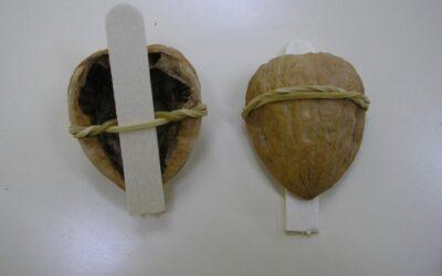 Instrumento tradicional con nuez. Carajillo. Envianos el tuyo