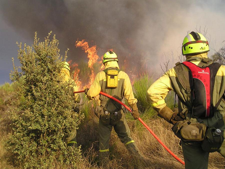 Todos contra el fuego. Entrevista a cuatro jóvenes bomberos forestales